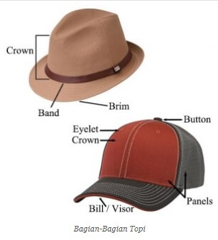 Anatomi Bagian Topi