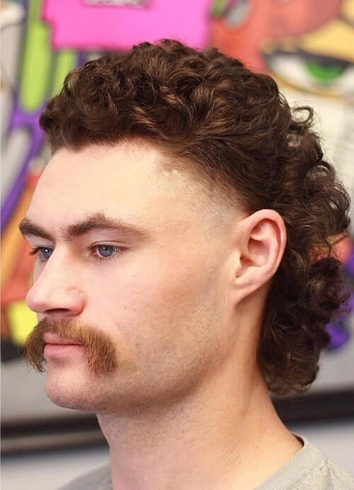 Mullet Curly